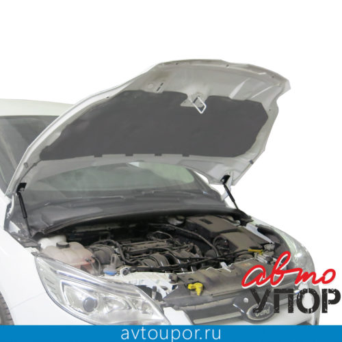 Ford Focus III 11-1